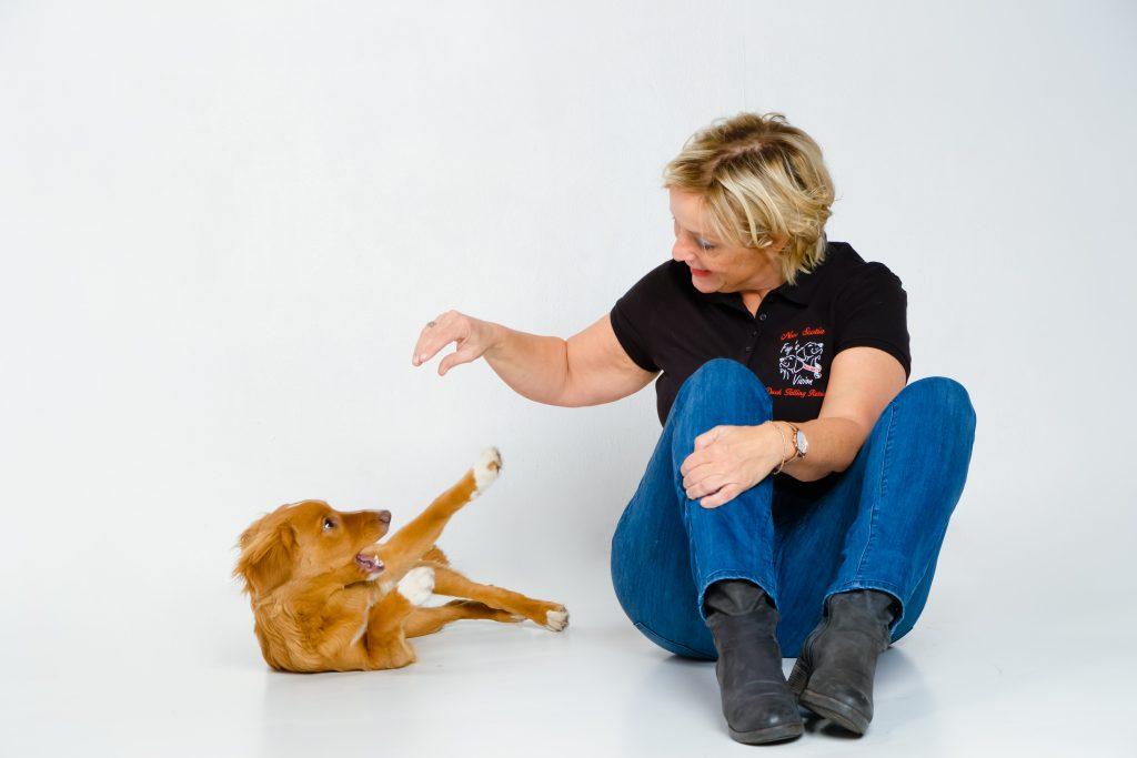 welzijn van de hond